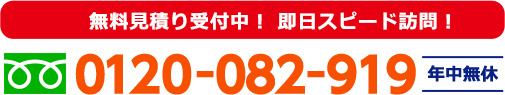 0120-082-919